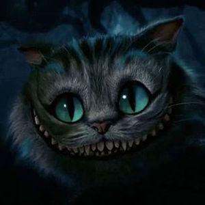 PJ - Katzenjammer