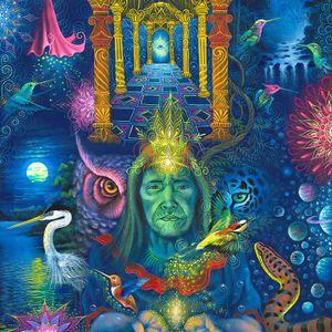 DJ FORZZ - MYSTICAL VOYAGERS VISIONARY SHAMANICS SHOW - 6/17