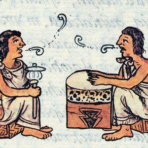 Promocional Somos Nuestra Memoria: la evolución del lenguaje 2