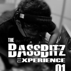 The BassBitz Experience Episode 1:Electro House