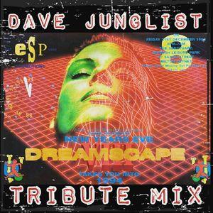 Dreamscape 8 Tribute Mix