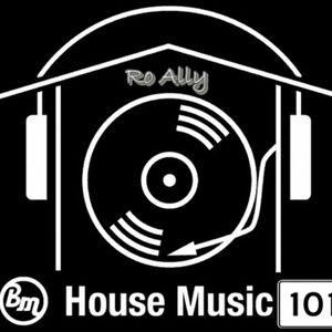 Ro Ally - HouseMix BM 101