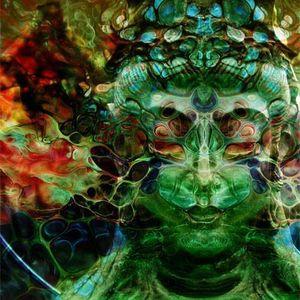 Shruti - Travelling Beyond Consciousness / Psychofreaks 11/2013