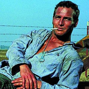 40. Cool Hand Luke, Murder by Death, Hell in the Pacific