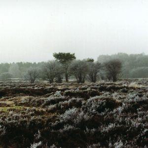 Cloudscape #50: Winter Solstice 2014