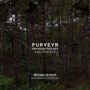 PURVEYR Producer Project: Asch