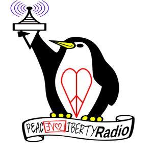 PLL Radio 401