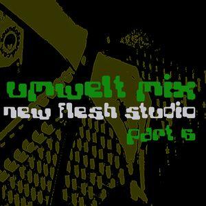 Umwelt@Newflesh Studio Part 06 (2007)