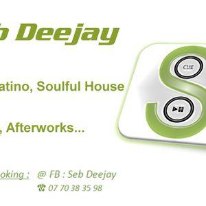 Seb Deejay - Absolutely fabulous @ RDV - 02052013