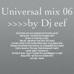 universal mix vol 06