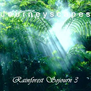 PGM 158: Rainforest Sojourn 3