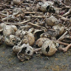 Rigor Mortis - La guerra de los inmundos