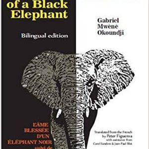 """""""L'anima ferita di un elefante nero"""": le metafore, la magia e la spiritualità di Gabriel Okoundji"""