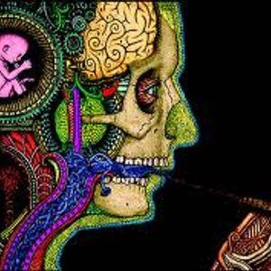 Psychotropic Nights