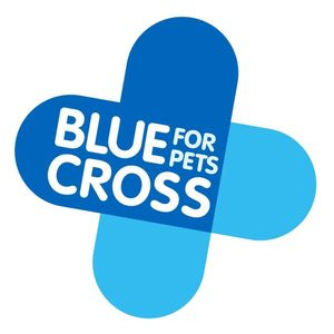 Blue Cross Rehoming centre for cats and dogs in Devon