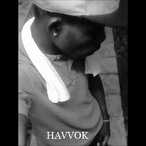 DJ HAVVOK-AMERICAN MIX 2(2016-15)