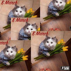 FLUKE JAM - 8 March