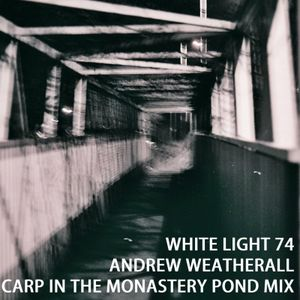 White Light 74 - Andrew Weatherall