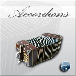 Accordion_Best Service_Demo Songs