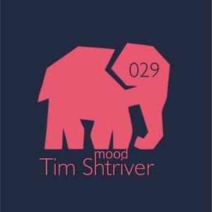 Tim Shtriver - mood 029