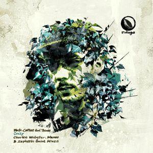Foliage Records Podcast mixed by Matthew Bandy