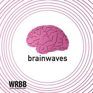 Brain Waves Ep. 3 - Çatalhöyük
