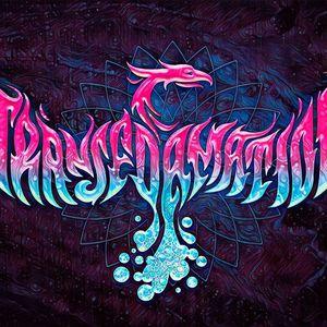 Shahid Buttar DJing & MCing for TransFOAMation in Black Rock City (09.02.2017)