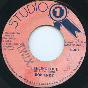 RIDDIM HISTORY #30 : Feeling Soul