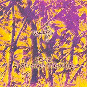 BS042 - A Strange Wedding (Worst Records)