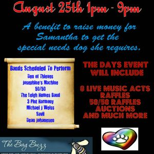 Angels For Samantha Benefit - 8/25/2013 at CJ's On The Island, Treasure Island, FL