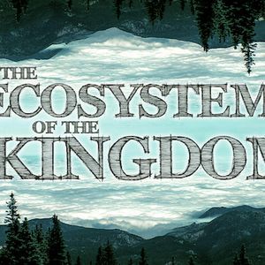 The Ecosystem of the Kingdom | Part 7: Physics