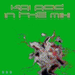KAi ACiD - 2010 Various Artists In The Mix 4