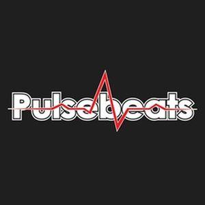 Pulsebeats - Live at Mainstream (Warm-Up) 12-03-2016