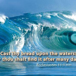 매일 성경: 네 떡을 물위에 던지라(전11:1-10)