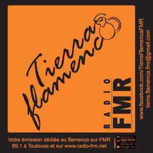Tierra flamenca - Janvier 2019 - Guitarristes de Jerez 1/2