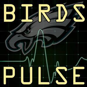 Birds Pulse Episode 49
