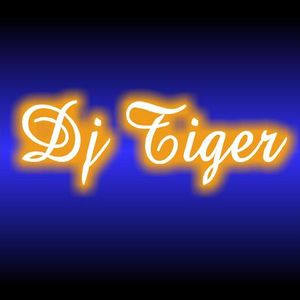DJ Tiger August 2012 mix