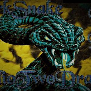 Darkmix Special Live Deep House Radio TwoDragons 28.12.2017