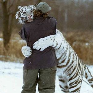 Free Hugs 01