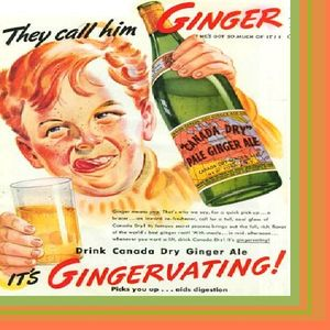 Fresh Ginger Ale