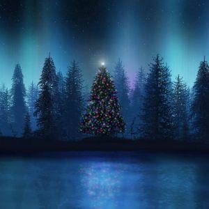 XEO wish Happy Christmas (Dec 2010)