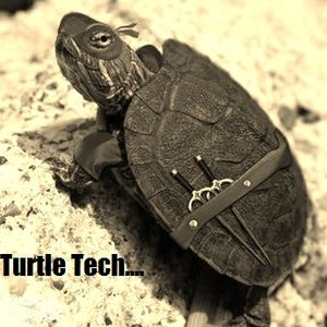 """Fyl_Turtle_Tech_Episode_Two_(You_Know_That_Word_""""Szelet""""?)"""