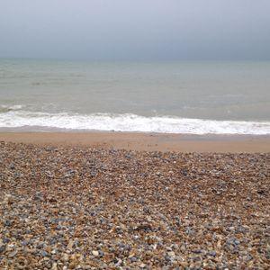 Sea Mixey
