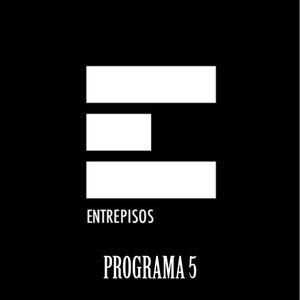 Entrepisos Programa 5