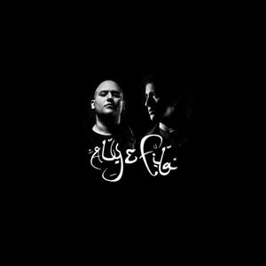Aly & Fila - Future Sound Of Egypt Episode 488