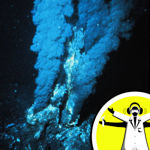 Extreme Organisms and Hydrothermal Vents