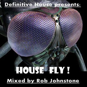Rob Johnstone Definitive House    House Fly!