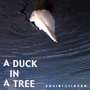 A Duck in a Tree 2012-08-04 | Swallowing a Bee