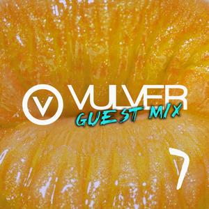 Vulver Guest Mix 7 | Felipe Simo