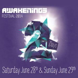 Jon Rundell - Live @ Awakenings Festival Spaarnwoude (Netherlands) 2014.06.29.